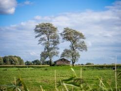 Land-1400751 Kopie
