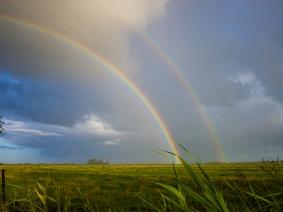 Regenbogen-1400624